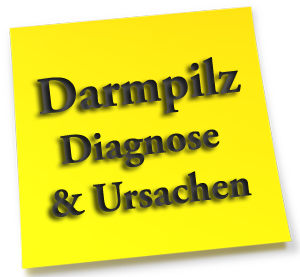Darmpilz Diagnose