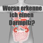 Woran erkenne ich Darmpilz Symptome?