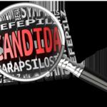 Der Hefepilz Candida Parapsilosis – Symptome, Ursachen und Behandlung