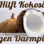 Hilft Kokosöl gegen den Hefepilz im Darm?